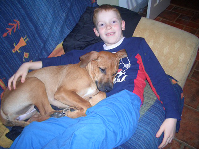 Ridgeback dogs and Children