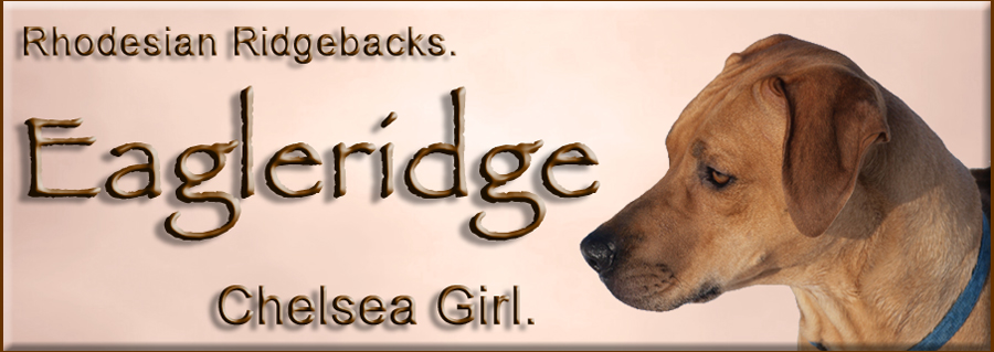 Eagleridge Chelsea Girl